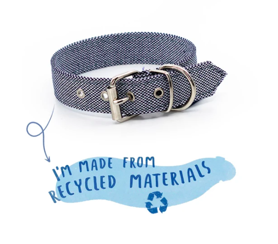 eco dog collar