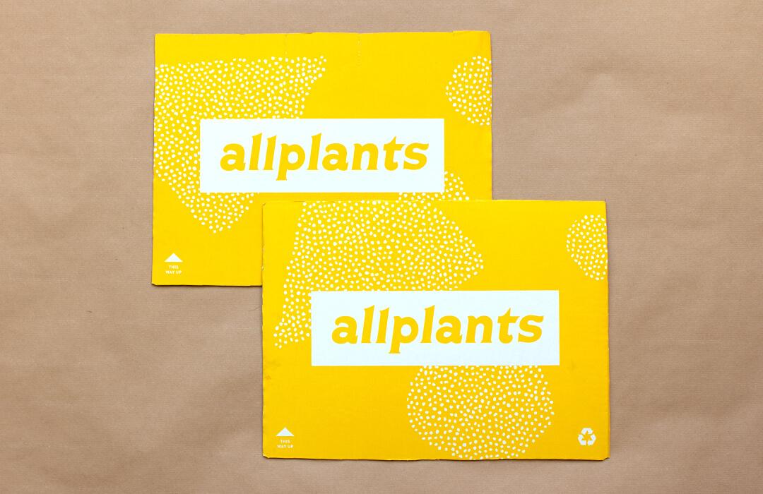 cardboard allplants box