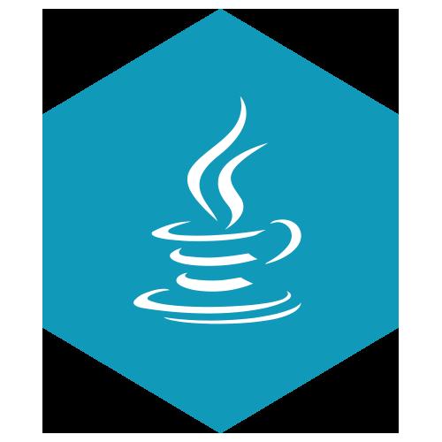 Java expertise logo