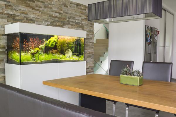 Süßwasseraquarium Sideboard