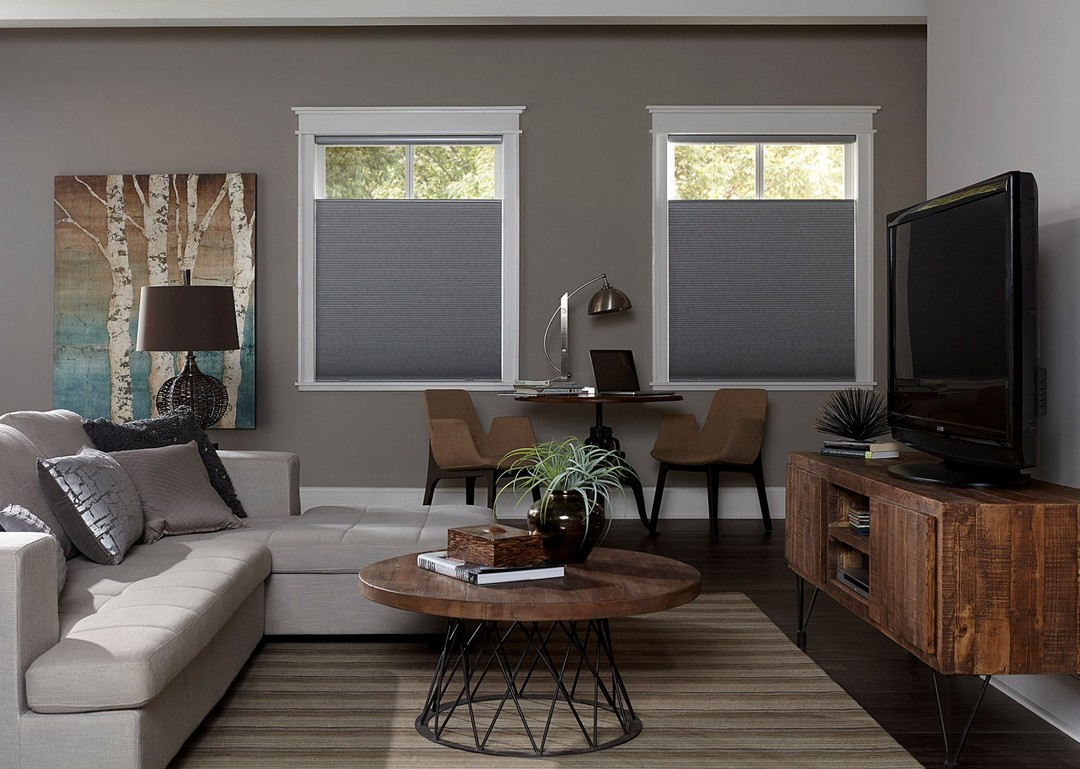 neutral, grey living room with blackout cellular shades in windows.