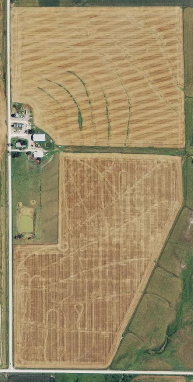 Standard RGB orthomosaic map of farm fields.