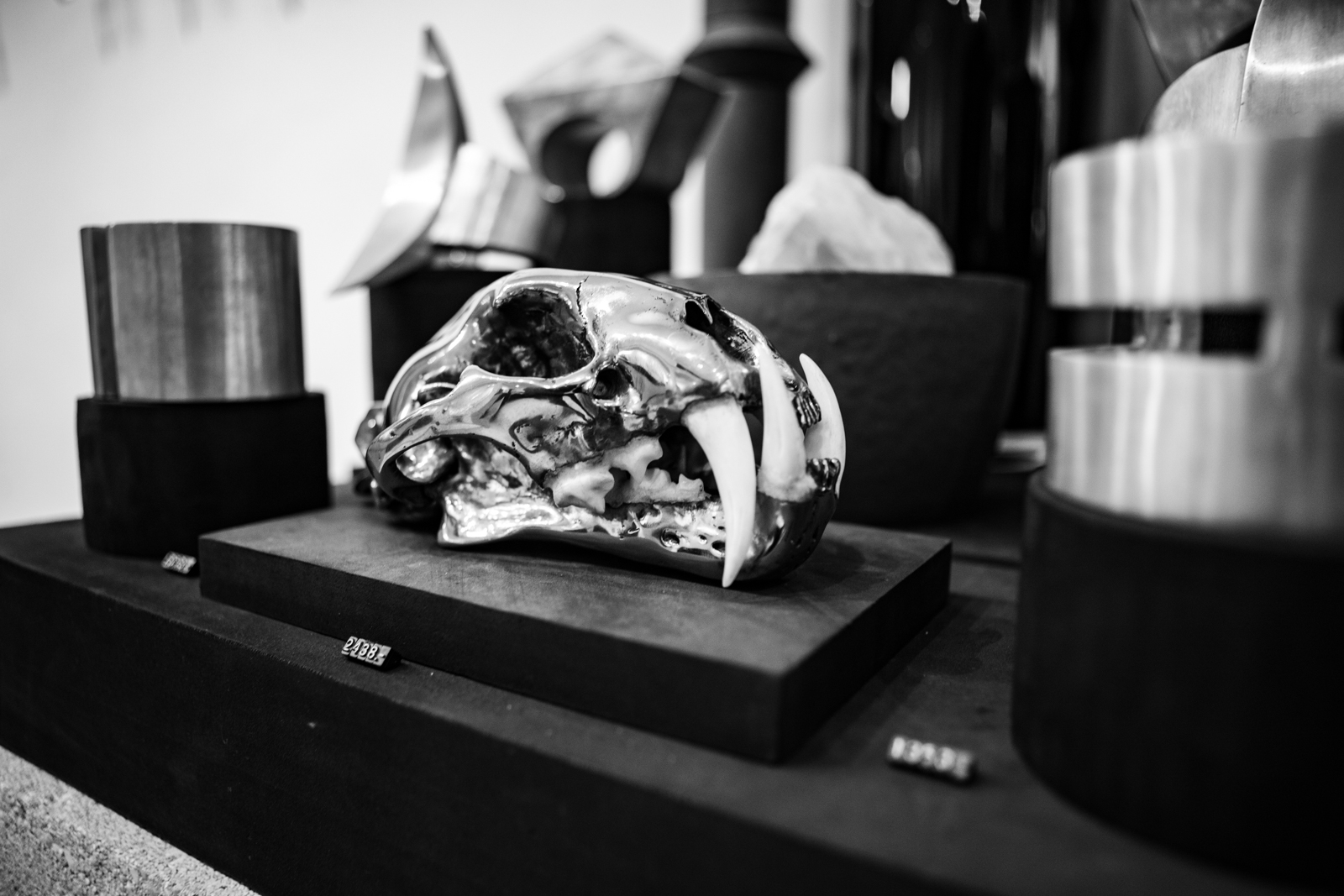 Parts of 4 Showroom Leopard Skull Animal Magic in Silver FW20