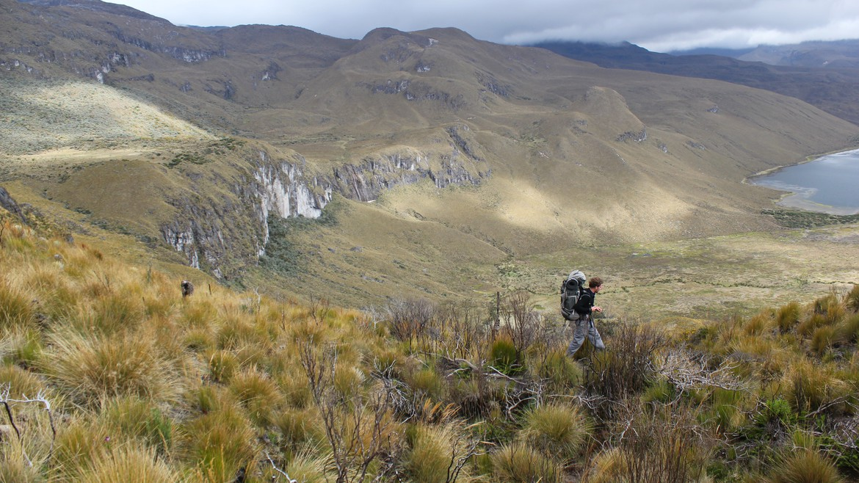 parque de los nevados - 7d9beth2015  Los Nevados National Park