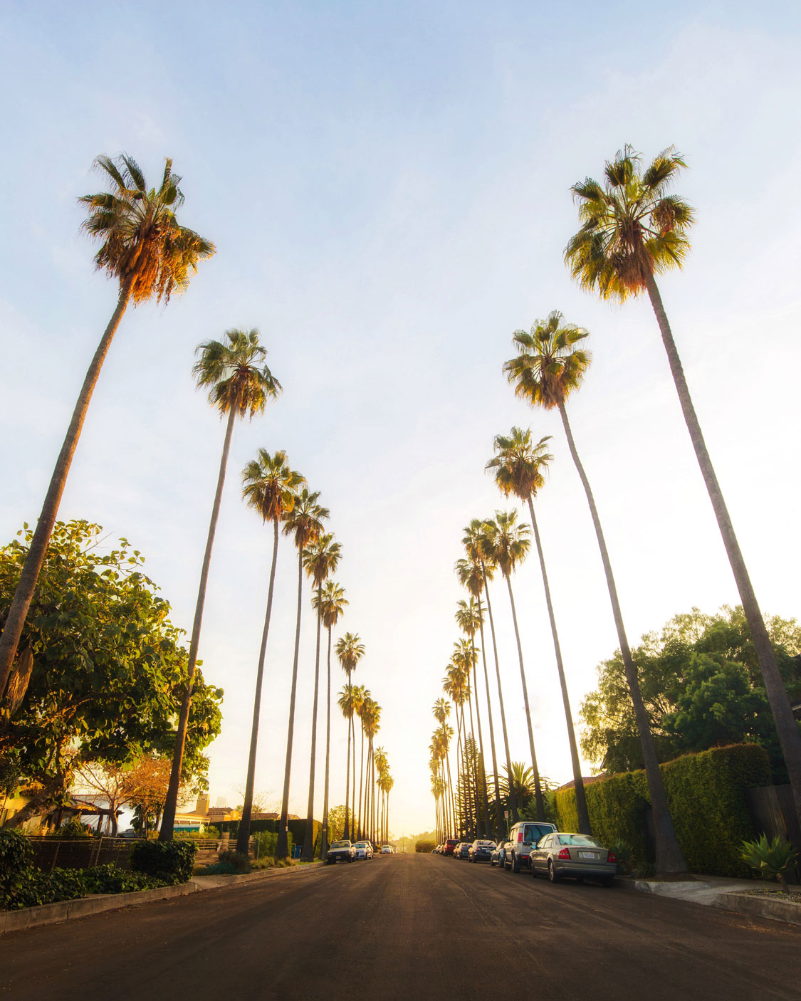 Best Places to Take Pictures in LA/@tommylundberg