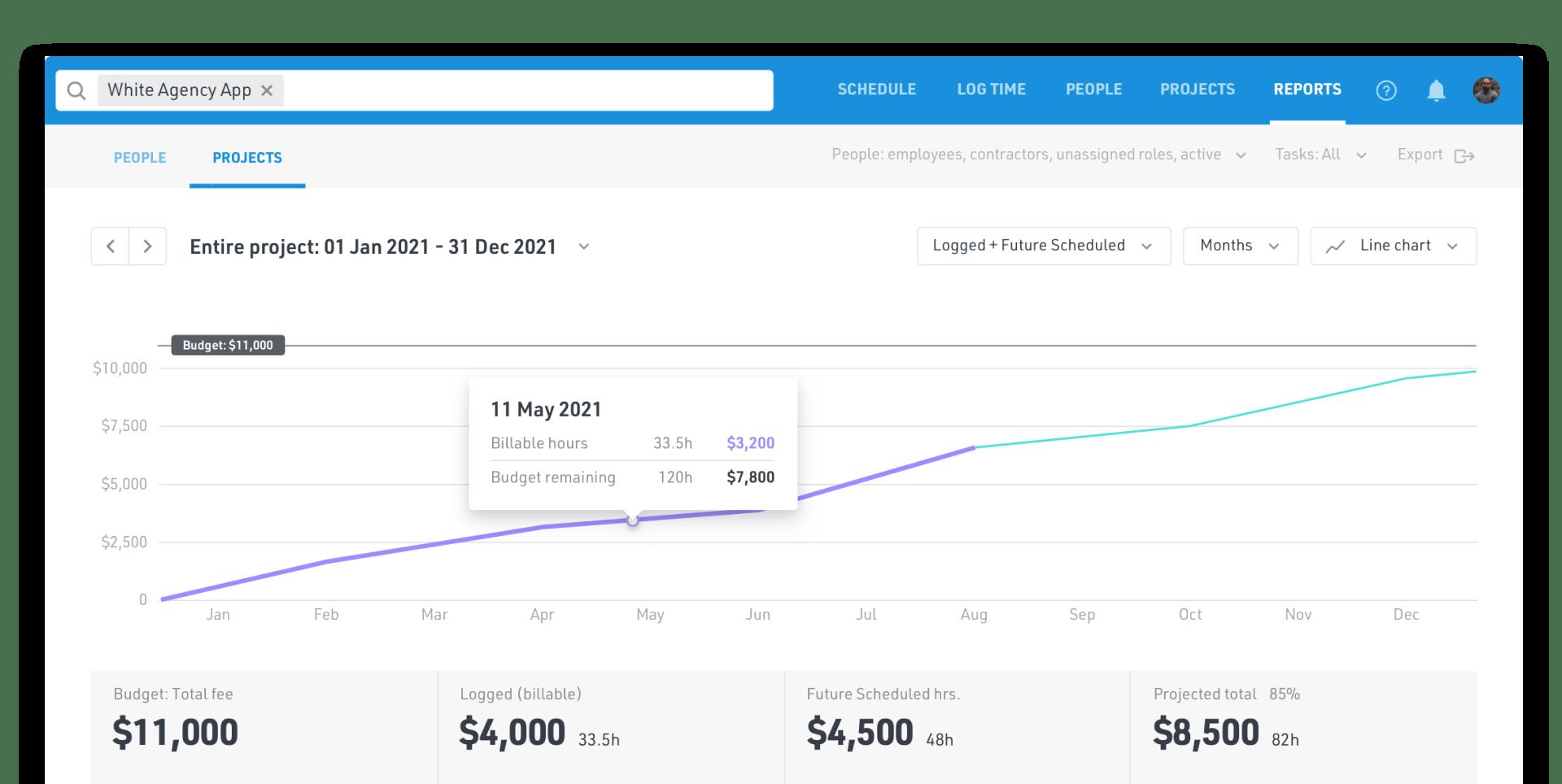 Track project budgets screenshot