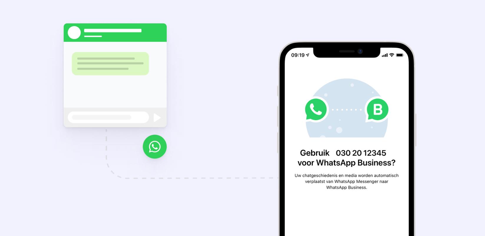 whatsapp business chat widget