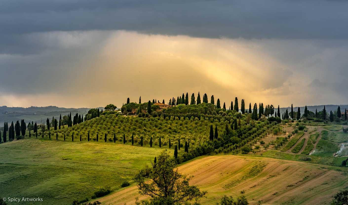 Toskana Landschaft Olivenhaine