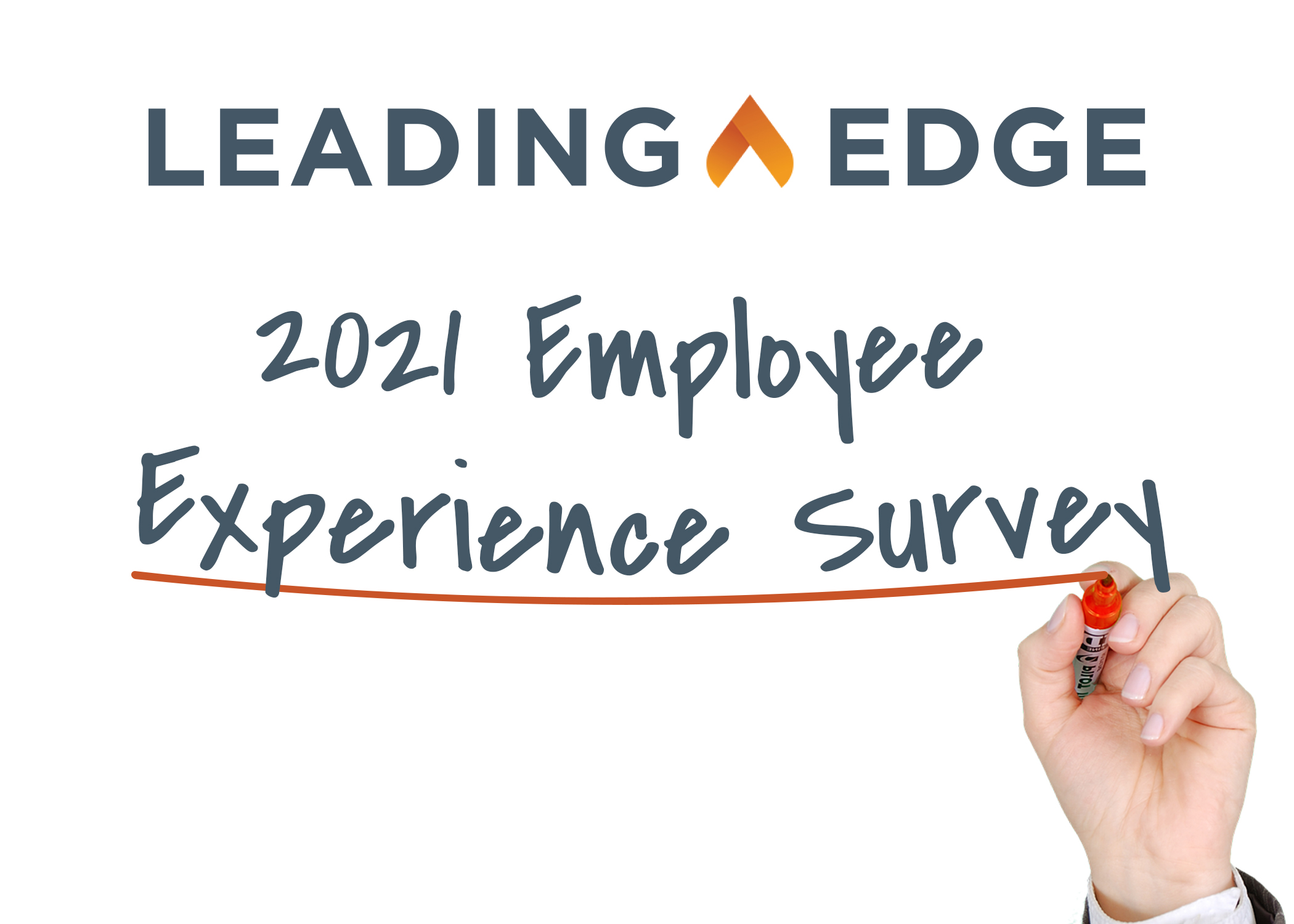 Employee Experience Survey 2021