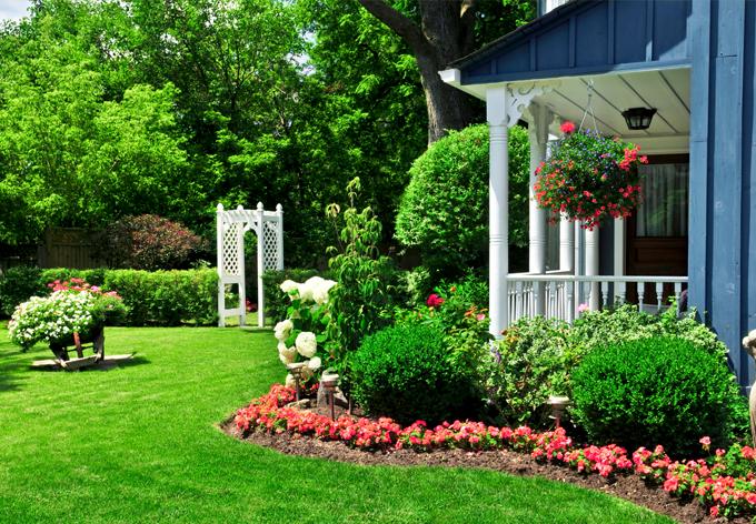 Nos conseils pour choisir les plantes et arbustes pour votre jardin for Choisir plantes jardin