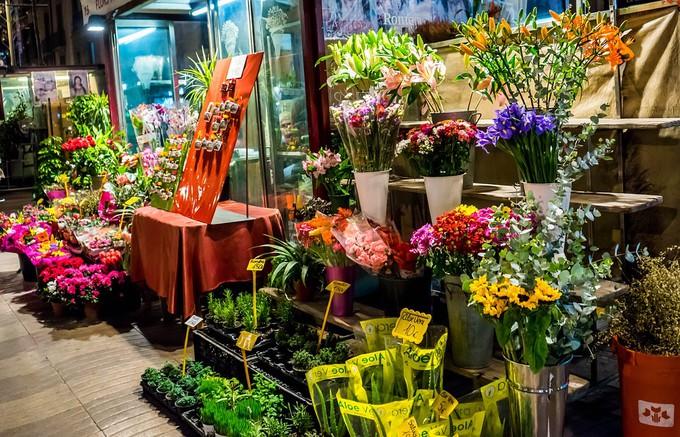 Fabuleux Comment allez-vous agencer et décorer votre boutique de fleurs ? ZU93