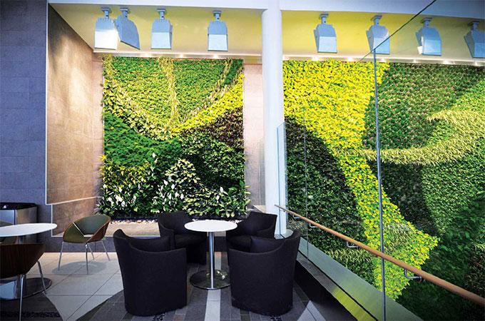 Quelles plantes prendre pour un mur v g tal for Mur vegetal exterieur quelles plantes