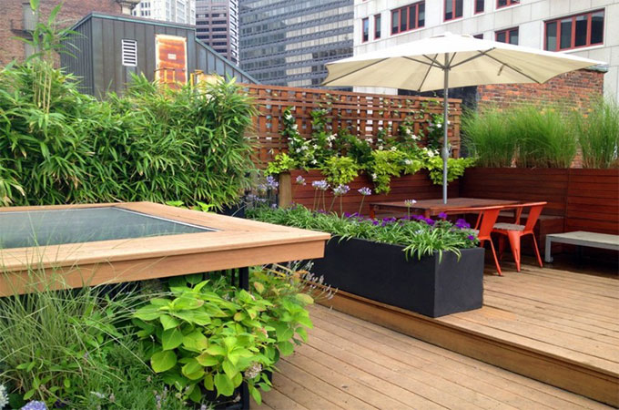 Am nager une terrasse quelles plantes for Amenager la terrasse