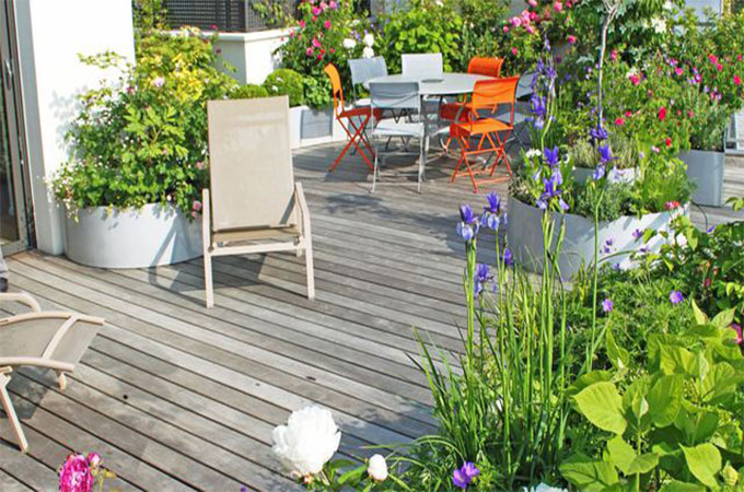 am nager une terrasse quelles plantes. Black Bedroom Furniture Sets. Home Design Ideas