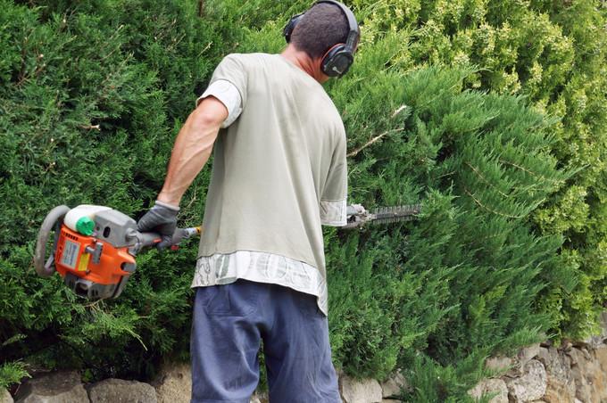 Co t d un entretien de jardin for Jardinier entretien jardin