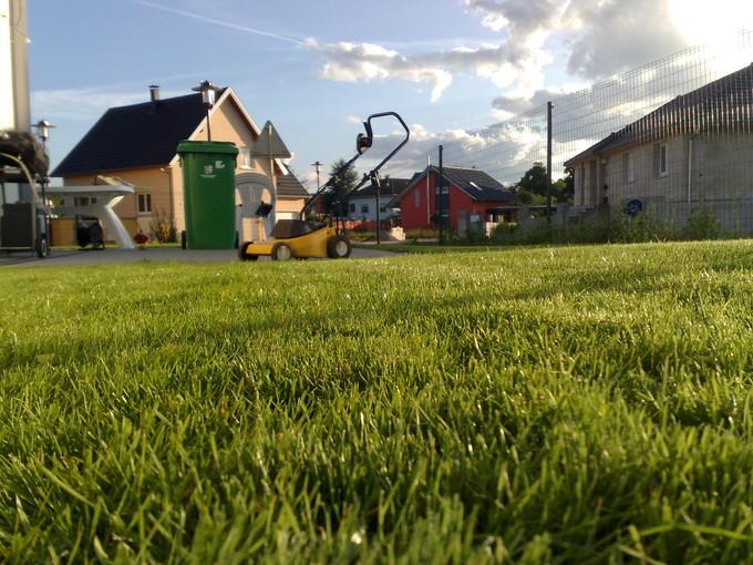 Quel tarif pr voir pour faire tondre votre pelouse for Tarif entretien pelouse