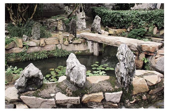 Carpes Koï, accessoires piscine, matériel bassin et décorations jardin