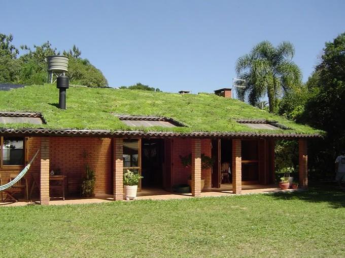 Tout ce que vous devez conna tre sur le toit v g tal for Maison toit vegetal
