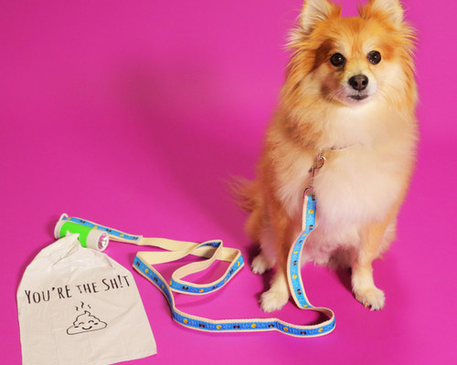Show Some Puppy Love with the Pompreneur: Material's Newest Store!