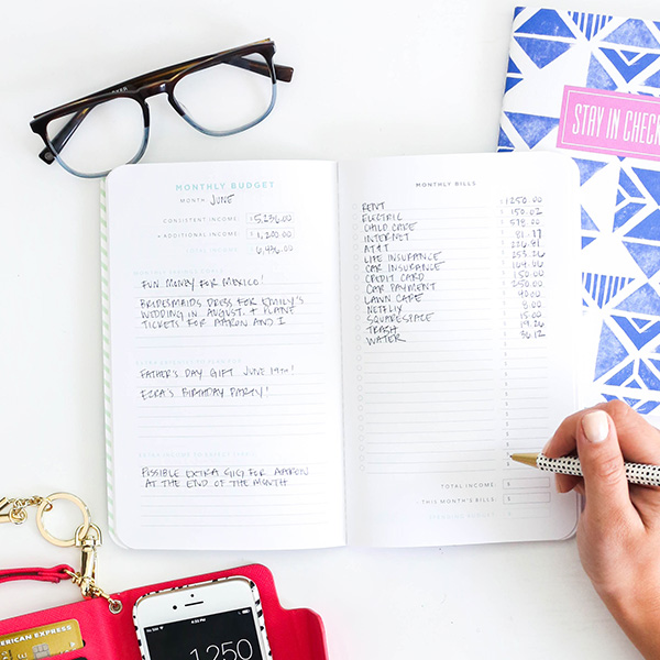classic budget planner may designs