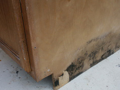 "Cabinets are Carefully Restored to ""Like New"" Condition, Erasing All Signs of Damage."