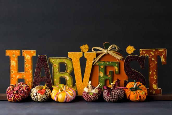 Harvest Craft For