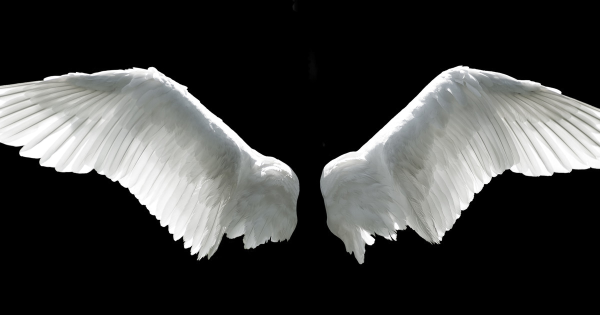 Christmas Crafts How To Make Angel Wings Netmums