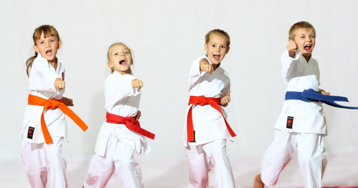 The Martial Arts Kid Stream