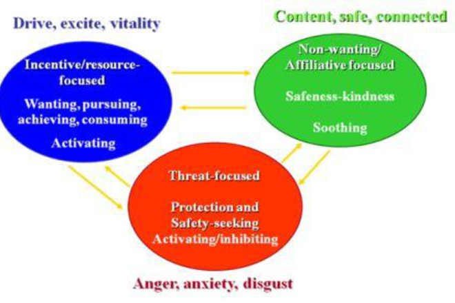 CMA: The Three Circles model - Netmums