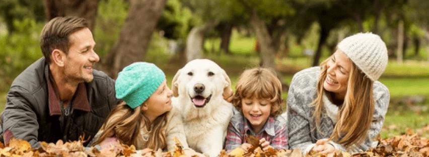 chien-promenade-avec-famille