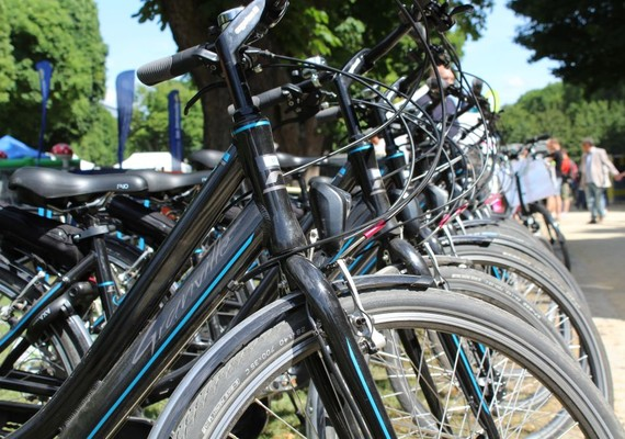 pro_velo_bike_bicycle_renting_group