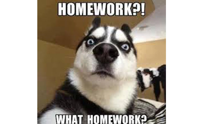 Excuses not to do homework