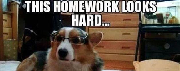 The 10 Best Homework Excuses - Bright Hub Education