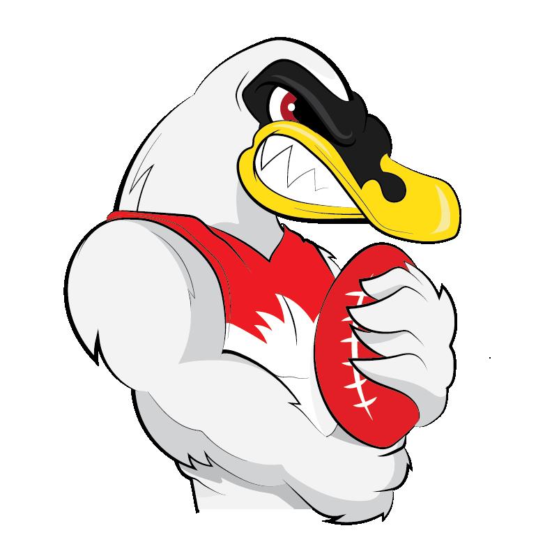 2017 Afl Pre Season Preview Sydney Swans