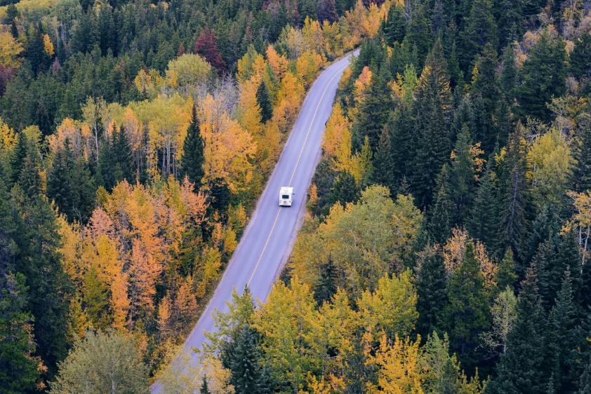 Urlaubsreise Autofahrt im Grünen Erholung