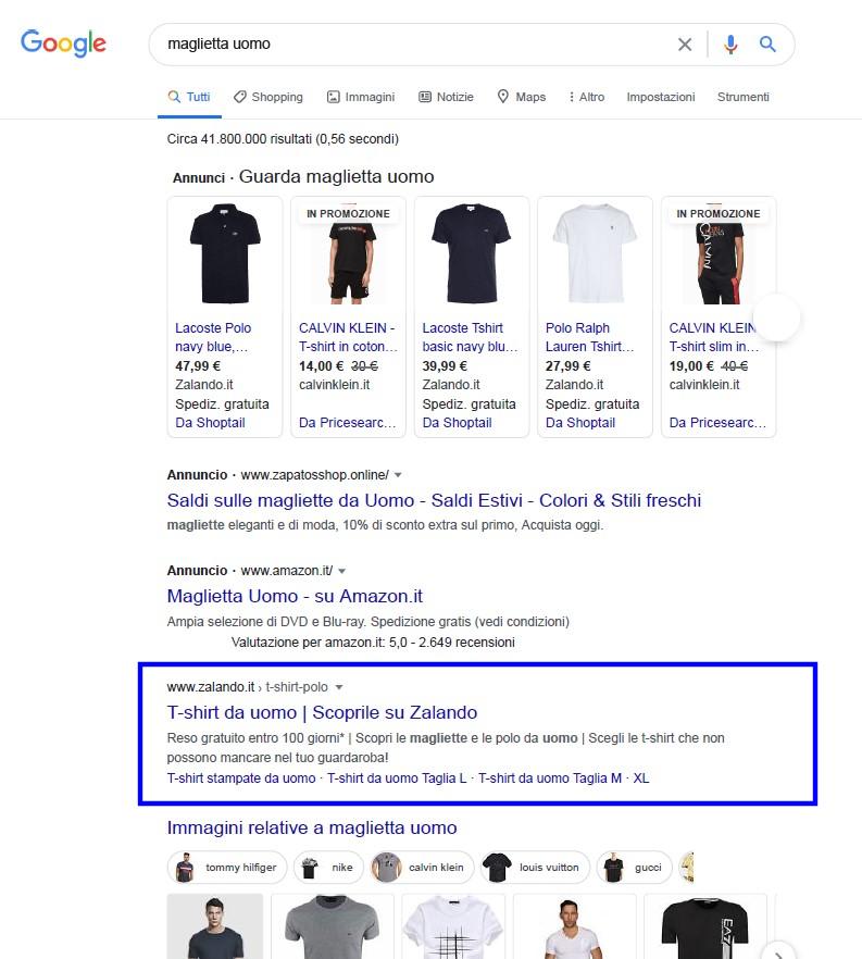risultati organici motore di ricerca google