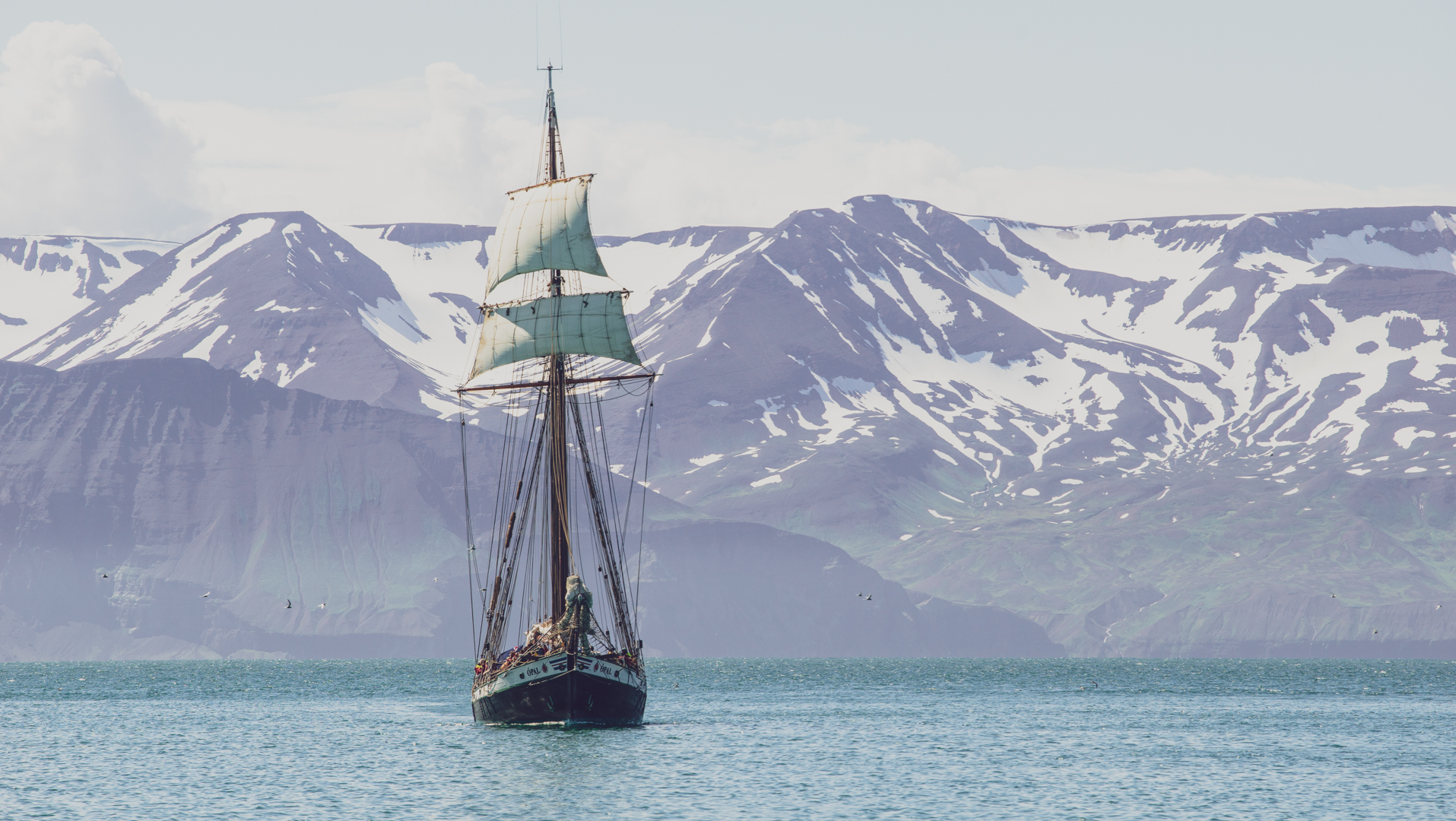 Sail boat in North Iceland