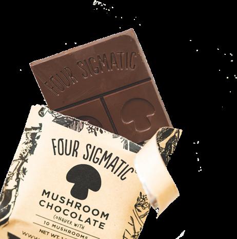 Mushroom Chocolate Image