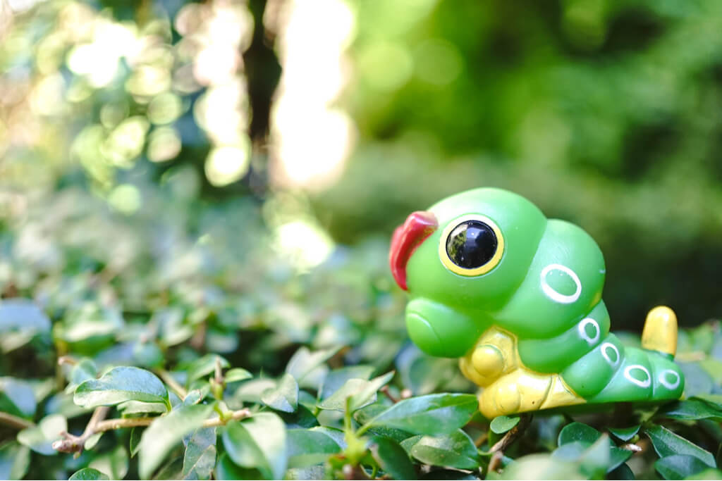 A wild Caterpie in among some leaves.
